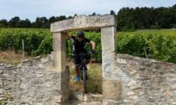 découverte des vignobles de bourgogne à vélo